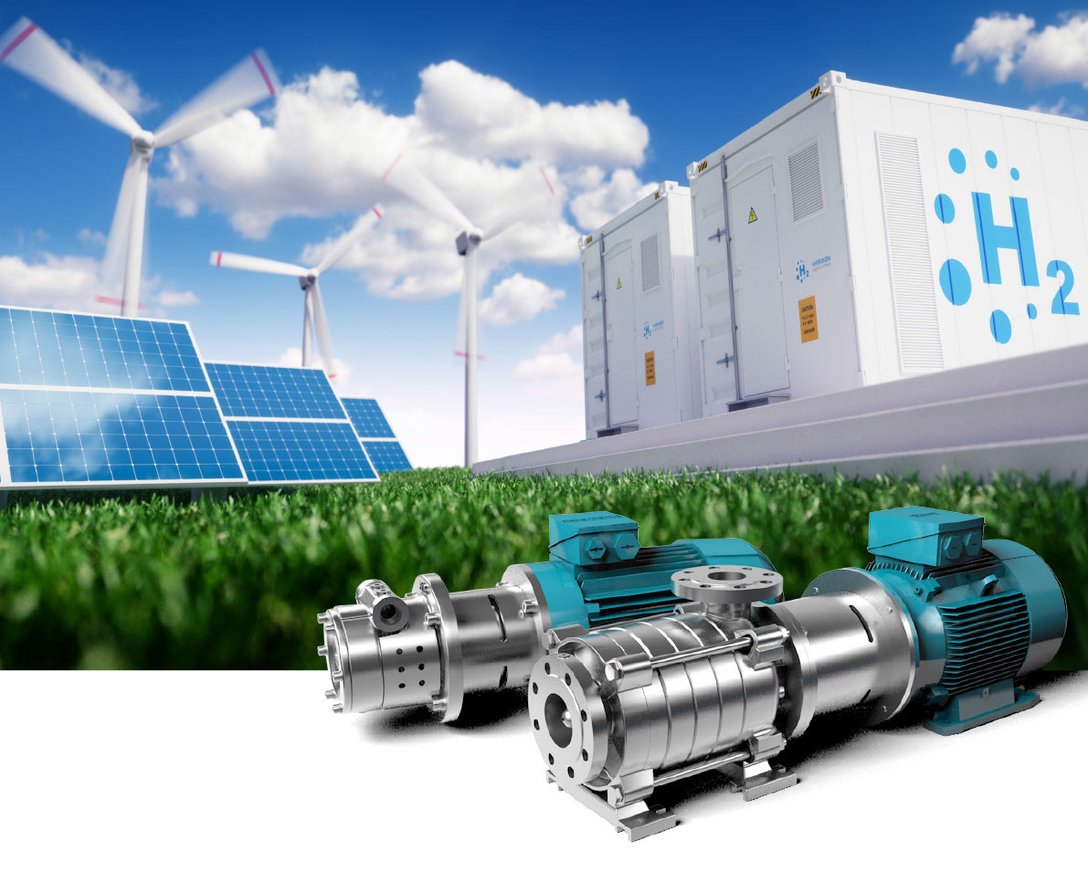 EDUR-Pumps for Innovative Hydrogen Technologies according to the National Hydrogen Strategy